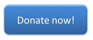 Kind to Kids Foundation | Hope and Help for Children in Need Blue Donate Now Button